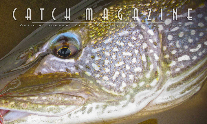 We are on Catchmagazine!!!!