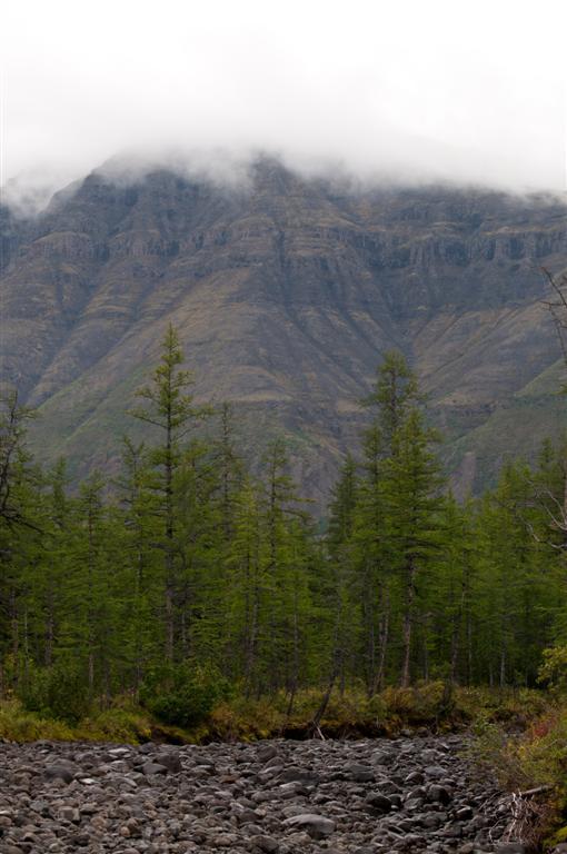 Kalnai kalniukai