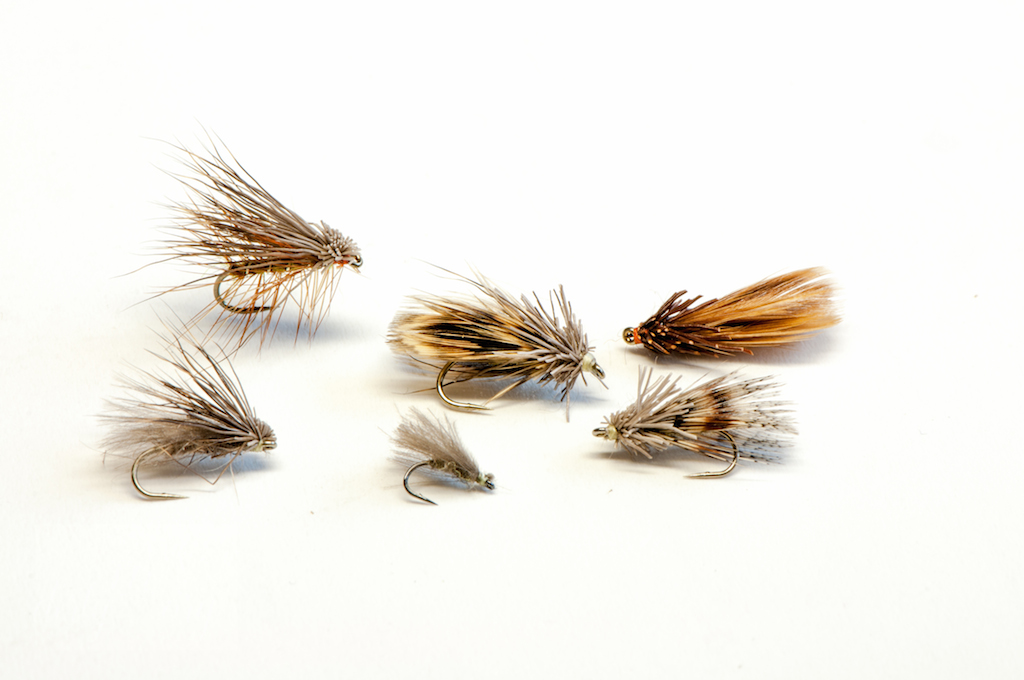 A set of caddis flies