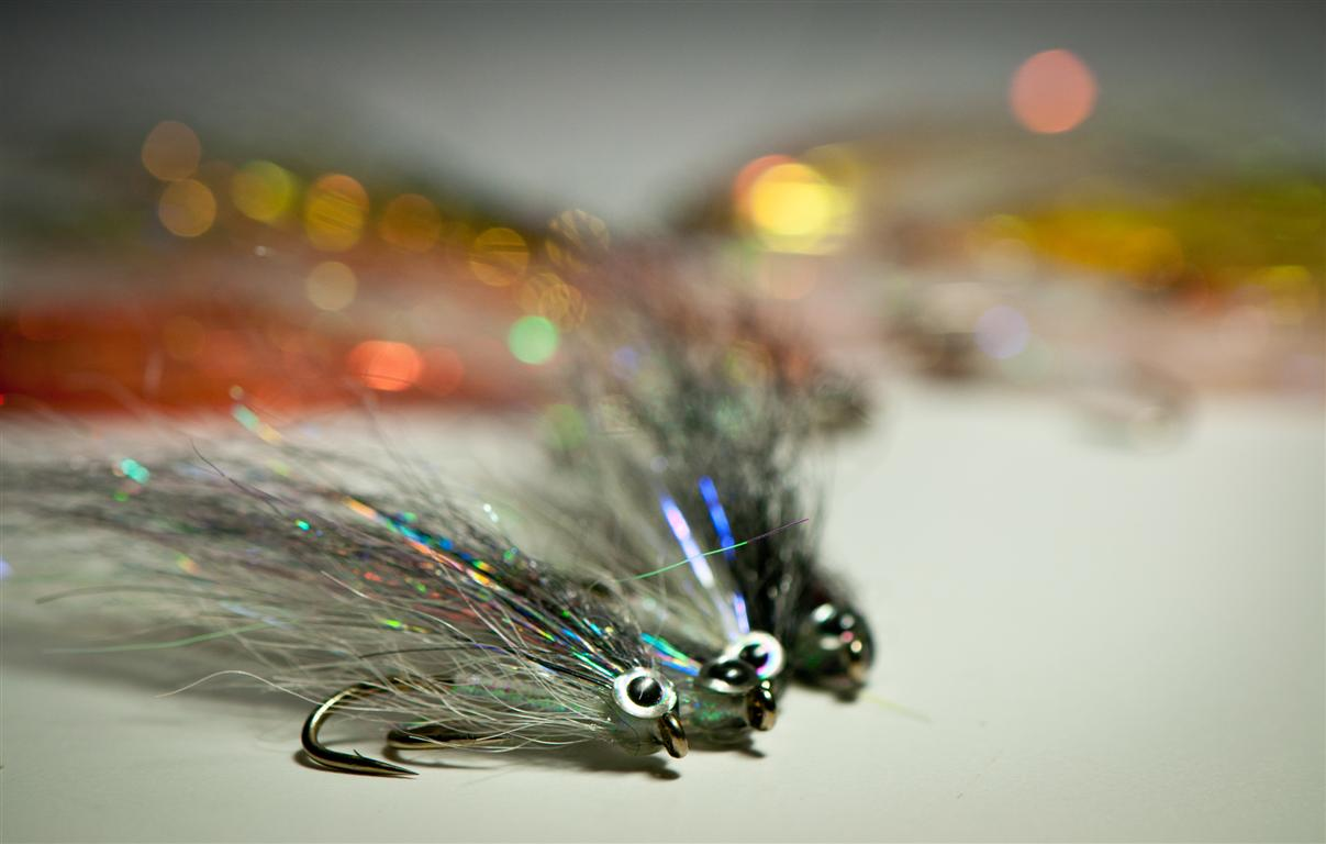 Flies for asp